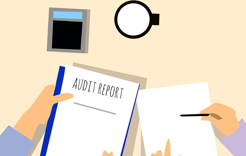 routine company audit